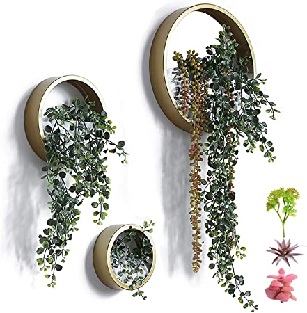 Amazon Com 3 Pack Set Modern Wall Planters Succulent Planter Circle Metal Flower Pot Indoor Air Plant Vertical Container Hanging Vase Home Wall Decor Size S M L Golden With 3 Artificial Succulent Plants Garden