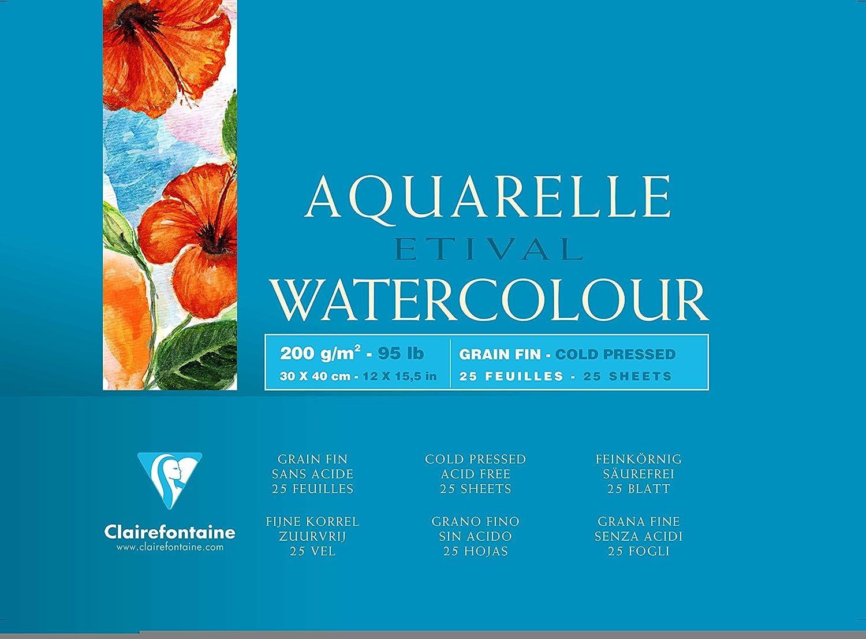 Clairefontaine 96455C Blocco Etival, 30 x 40 cm, 25 Fogli, Bianco C Rhodia Jardinage