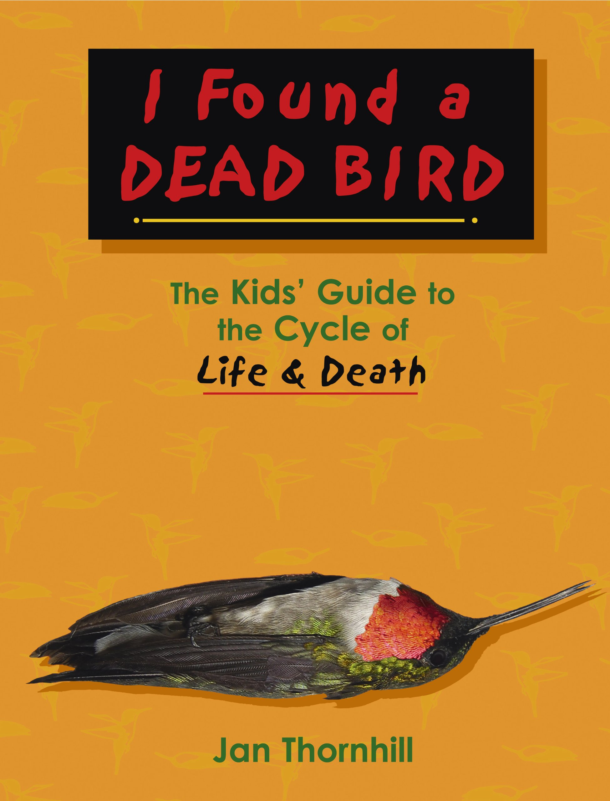 i found a dead bird the kids u0027 guide to the cycle of life and