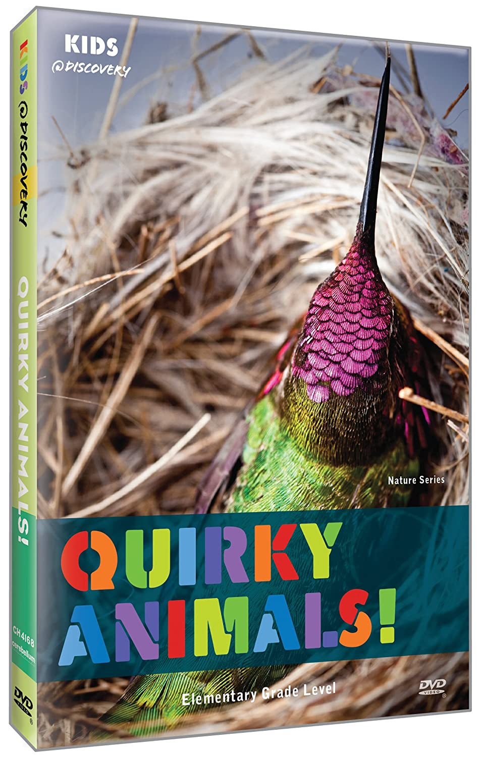 Kids @ Discovery: Quirky Animals!