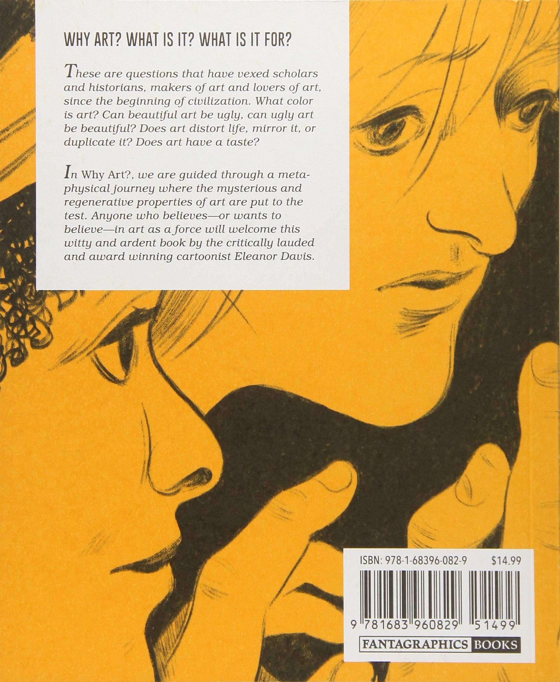 Amazon Why Art 9781683960829 Eleanor Davis Books