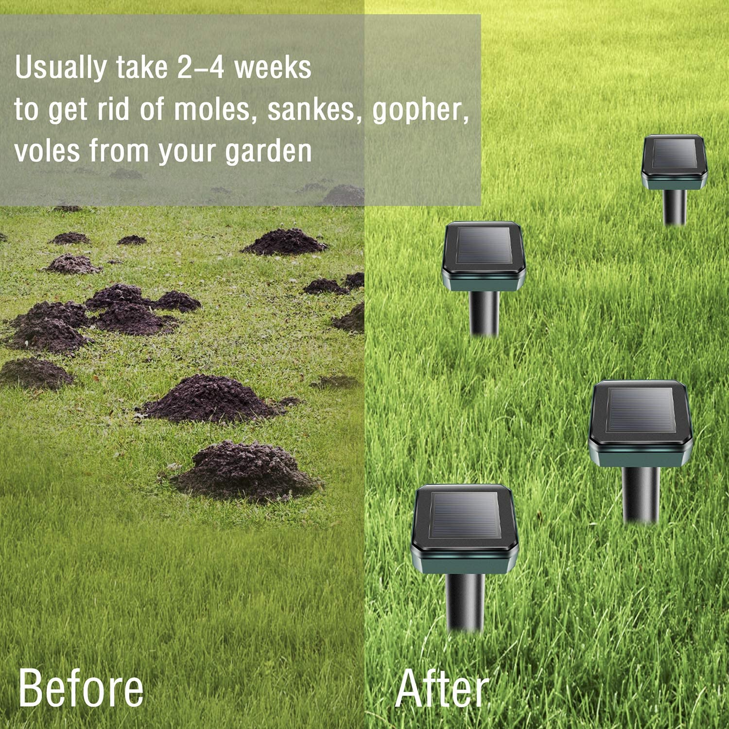 XMSTORE Mole Repellent, Classic 6 Pack Solar Powered and Ultrasonic Gopher/Rodent/Vole Repellent : Garden & Outdoor