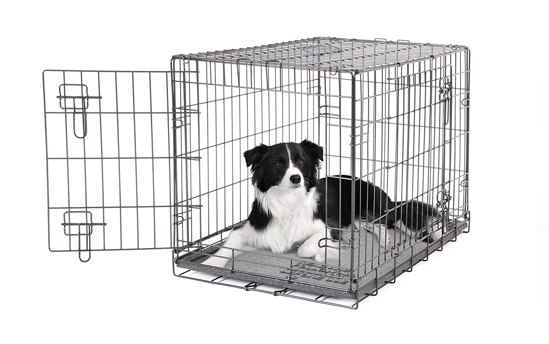 Dogit 2 Door Black Wire Home, Small: Amazon.co.uk: Pet Supplies