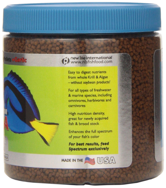 Herbivorous freshwater aquarium fish - Amazon Com New Life Spectrum Thera A Regular Formula 125 G Pet Food Pet Supplies