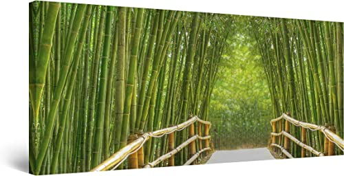 Startonight Canvas Wall Art Bamboo Alley – Green Framed 24 x 48 Inches