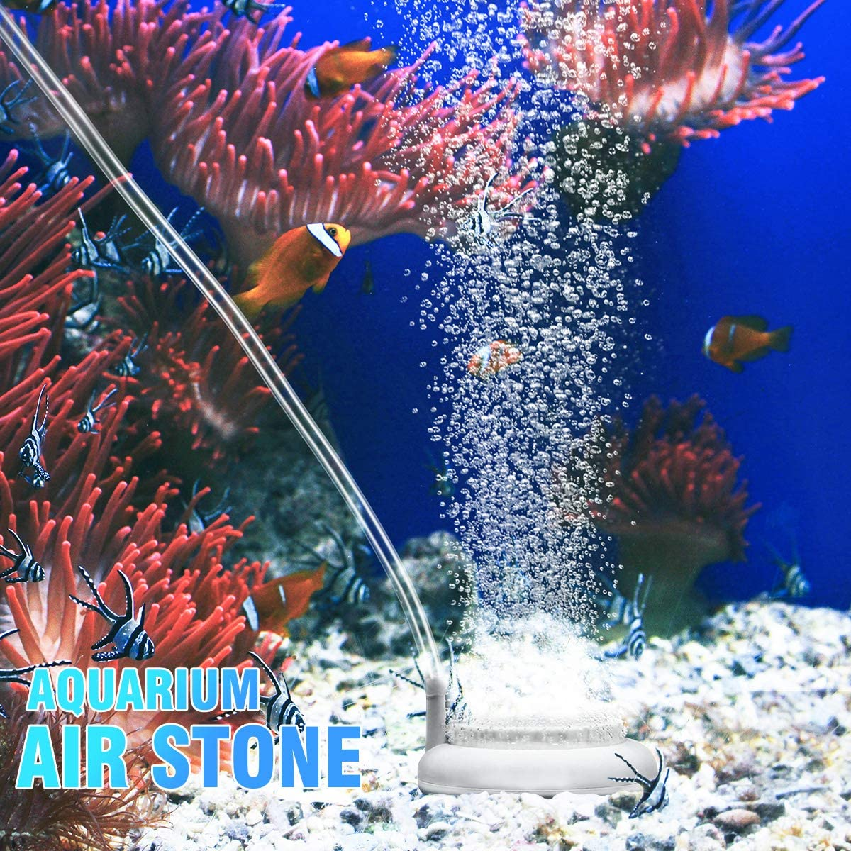 2 Inch POPETPOP Air Stone Bubble for Aquarium Fish Tank Round Oxygen Bubbler Diffuser with Suction Cup
