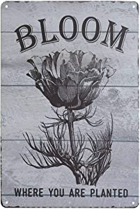PXIYOU Floral Bloom Where You're Planted Vintage Metal Tin Signs Home Bar Shop Decorations Coffee Sign Gift 8X12Inch