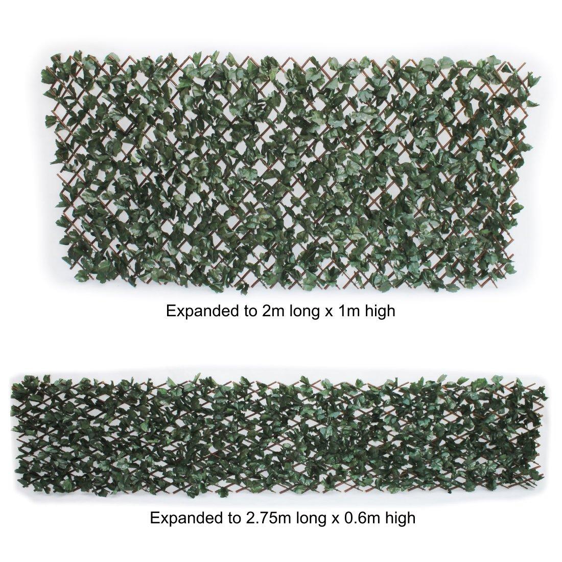 Amazon Künstliches Ahorn Efeu Rankgitter Sichtschutz 1 m x 2