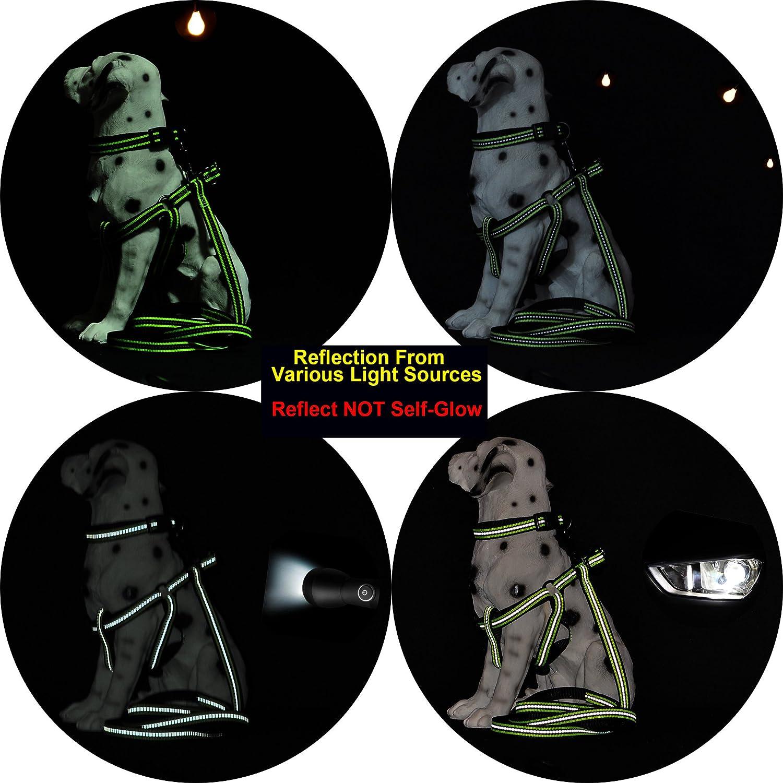 Mile High Life Night Tiras Reflectantes Dobles Collar de Perro de Nylon lim/ón Verde, Large Neck 40cm-53cm -24.75KG