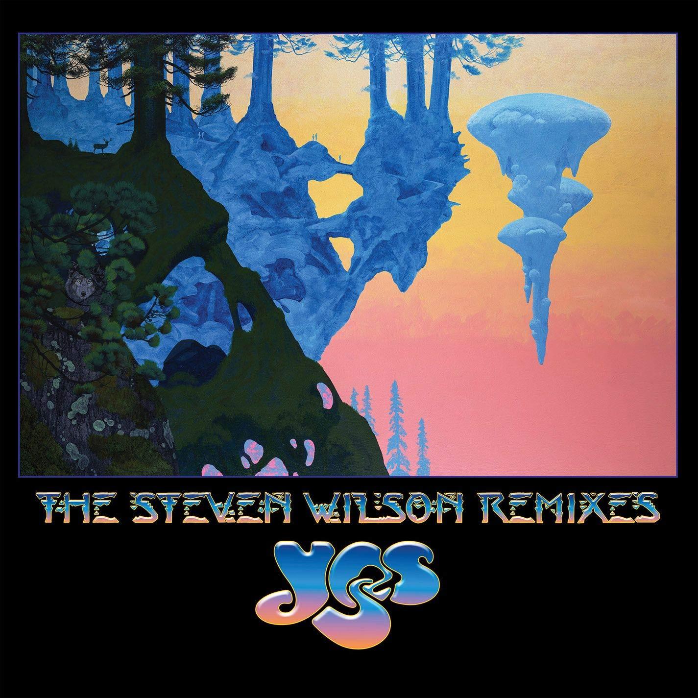 The Steven Wilson Remixes (6LP) by RHINO ATLANTIC