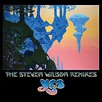 The Steven Wilson Remixes (Vinyl)