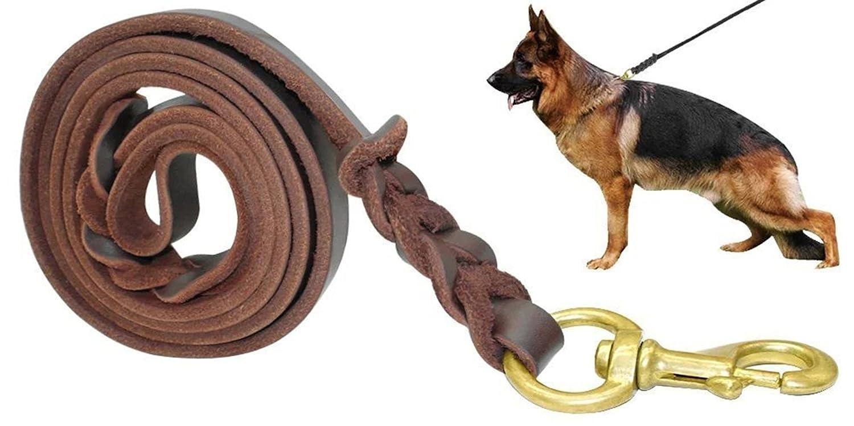 Fairwin Braided Leather Dog Leash 6 ft - K9 Walking Training Leads for German Shepherd Brown) 004 PET-SJA004