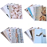 Nautical Beach Seaside Postcards - 20 Glossy Postcards - Bulk Set - Featuring Boats, Lighthouses, Sea Shells, Sand Castles - 4 x 6 Inches
