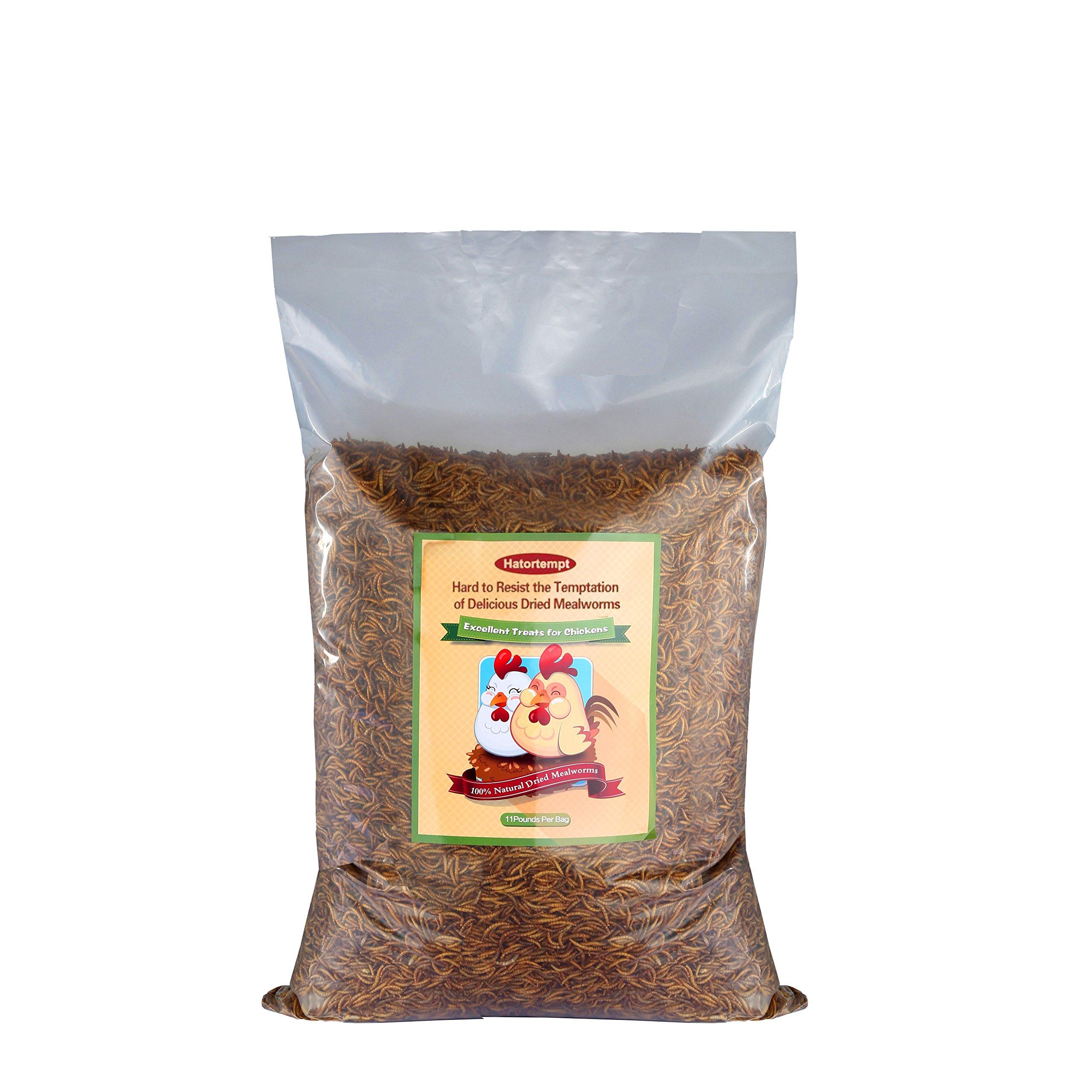 11lbs Bulk Non-GMO Dried Mealworms for Reptile, Tortoise ; Amphibian,Lizard ;Wild Birds; Chichens; Duck etc by Hatortempt