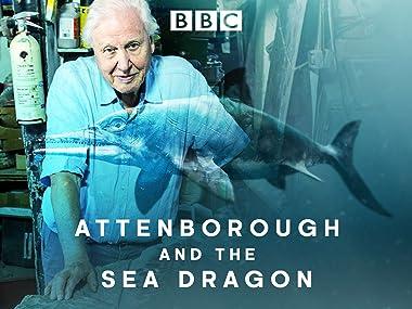 Amazon Co Uk Watch Attenborough And The Sea Dragon Prime Video