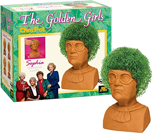 Amazon.com: Chia Pet The Golden Girls – Sofía maceta ...