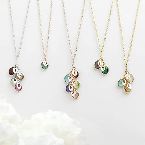 Christmas Gift for Her Personalized Birthstone Necklace for Mothers Initial Necklace for Women Gifts Birthstone Jewelry Family Tree Necklace Grandmother Gift Christmas Gift - BSON-L-D best gifts for grandmas