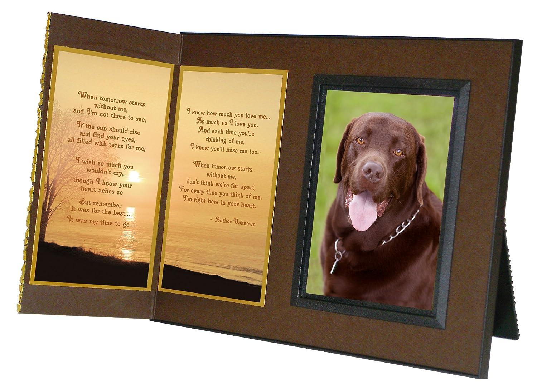 Amazon.com - Pet Lover Remembrance Gift, \