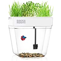 Back to The Roots 3-Gallon Water Garden Tank