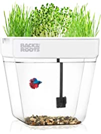 Back to the Roots Water Garden, Self-Cleaning Fish Tank That Grows Food, Mini Aquaponic Ecosystem