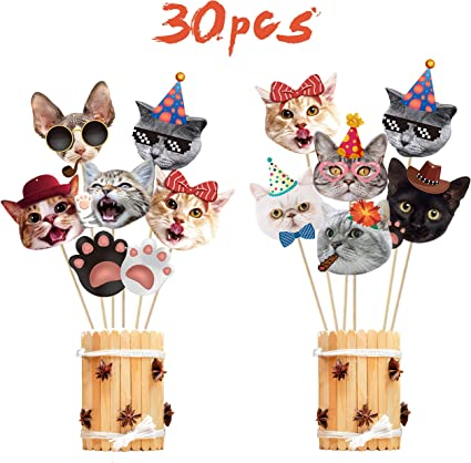 LIK 30 Pieces Pet Cat Hanging Swirl Decorations Cat Birthday Party Supplies Favors Decorations for Cat Theme Party Baby Shower
