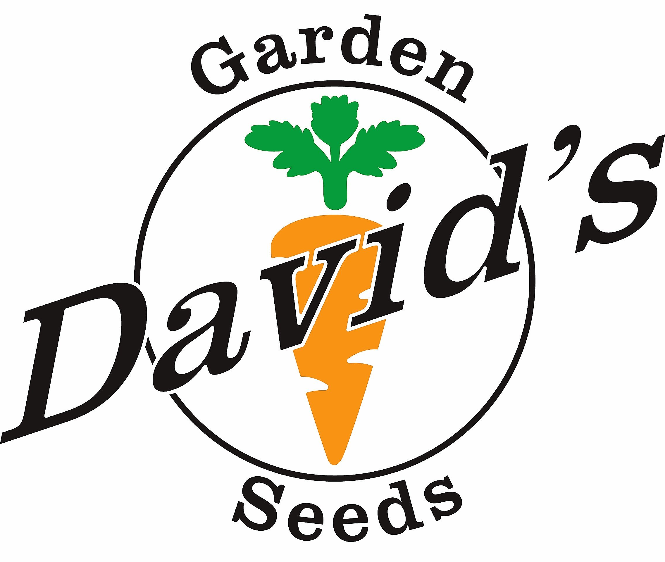 David's Garden Seeds Collection Set Lettuce DS927 (Multi) 12 Varieties 5000 Plus Seeds (Open Pollinated, Heirloom, Organic)