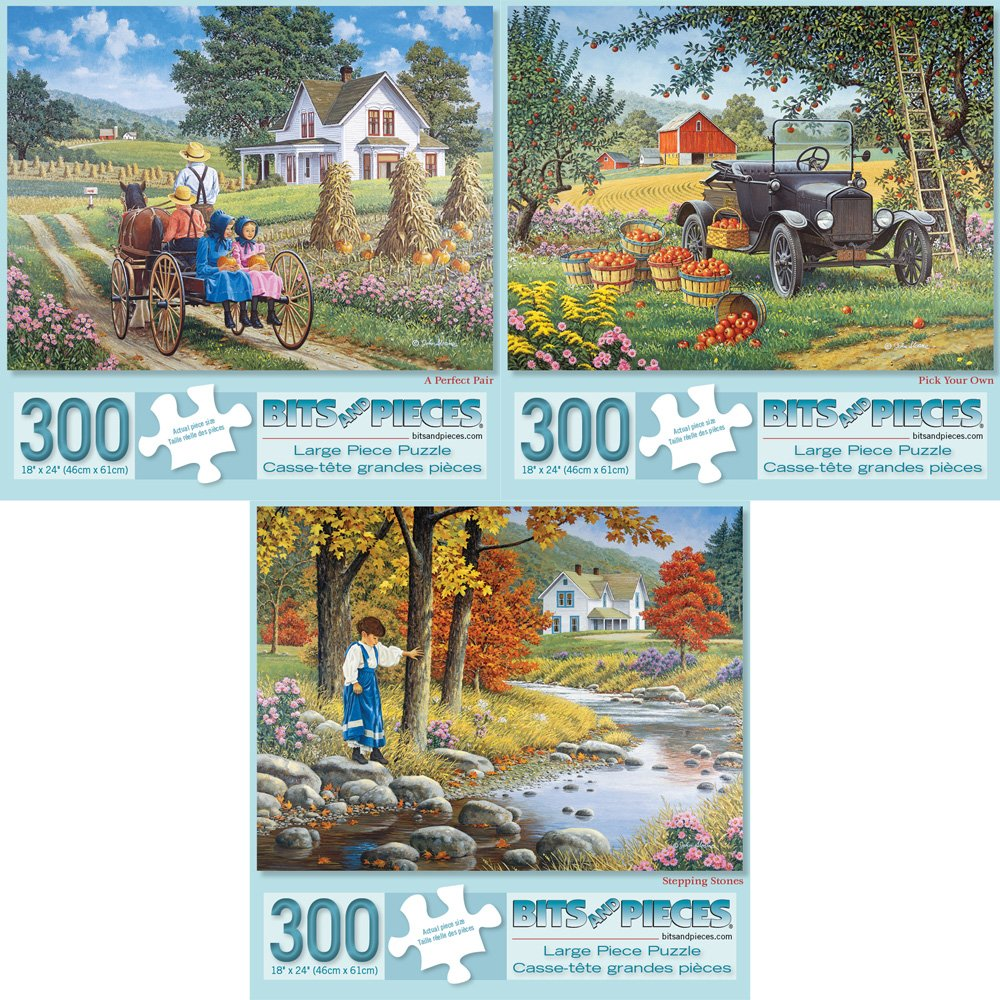 Bits and Pieces - Set of Three (3) 300 Piece Jigsaw Puzzles for Adults - A Perfect Pair, Pick Your Own, Stepping Stones - 300 pc Jigsaws by Artist John ...