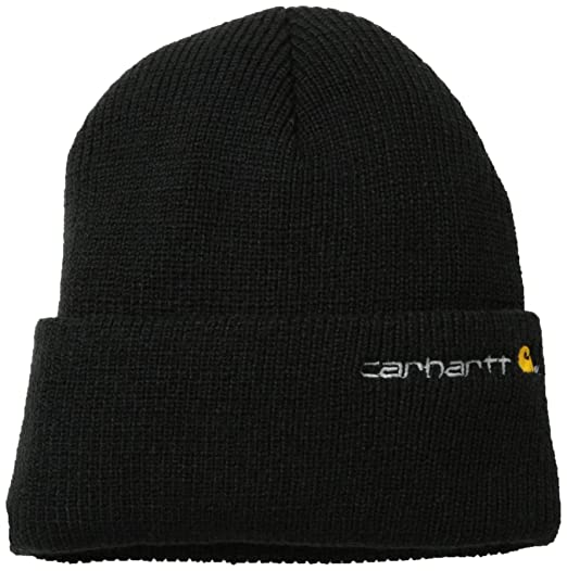 3daf37756fc Carhartt Men s Wetzel Watch Hat