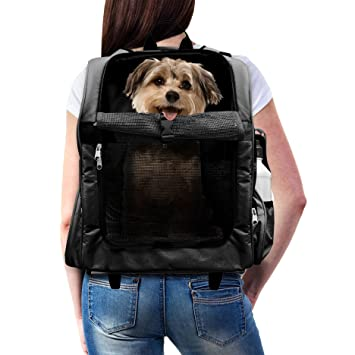 Amazon.com : Furhaven Pet Backpack-Roller Carrier for Dogs and ...