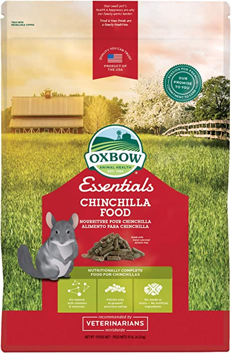 The Best Chinchillas Food