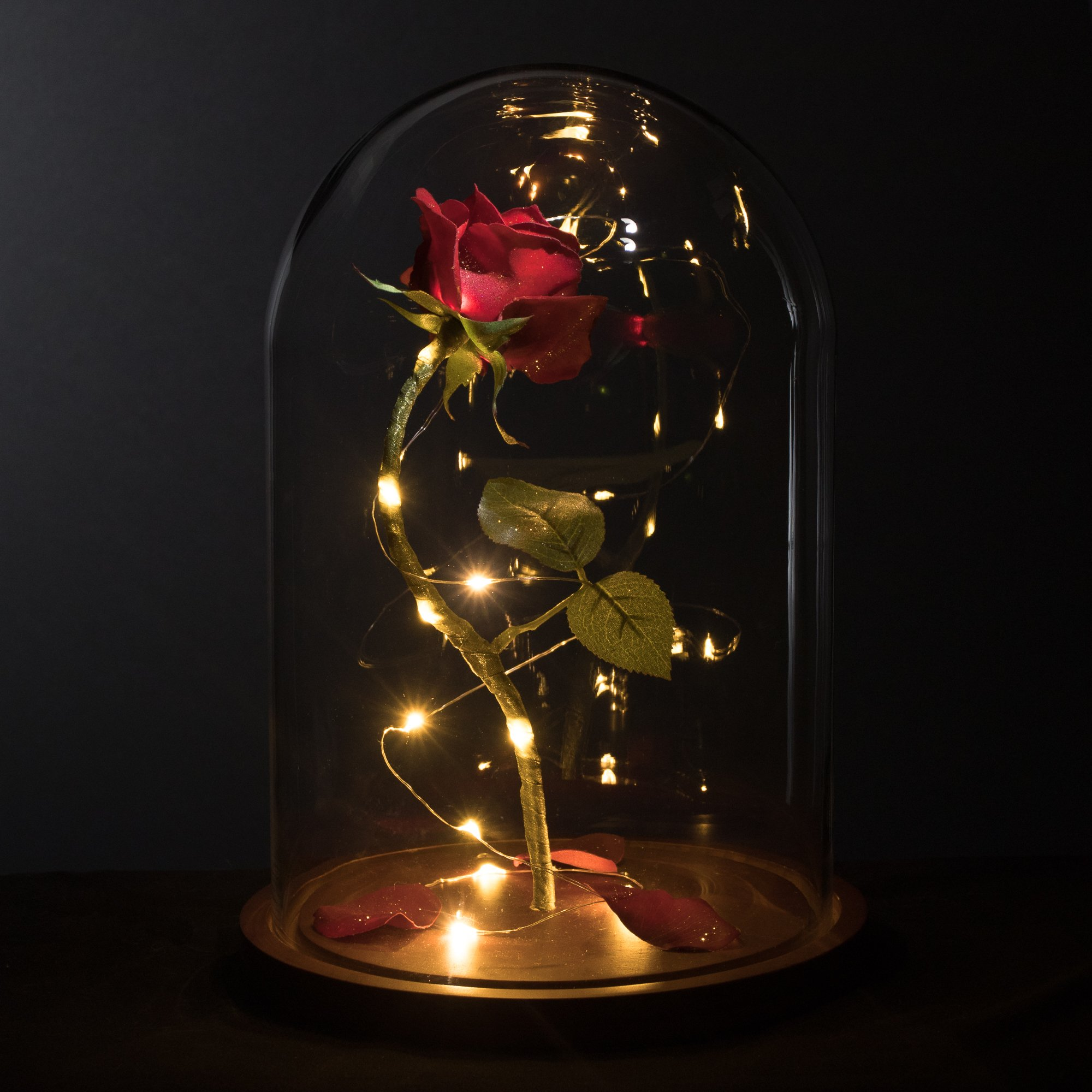 Life-Sized 13'' Enchanted Rose that Lasts Forever in Glass Dome Inspired By Disney Beauty and the Beast Belle by MagicPrincessWhitney Magic Princess Whitney