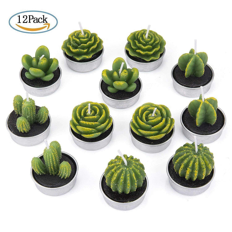 ZeWoo Lot DE 12 Cactus Bougies en Paraffine, 6 Formes avec Support de Bougie Bougies Chauffe-Plat pour Saint-Valentin Fête Mariage ou Deco Maison