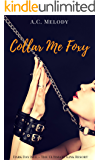 Collar Me Foxy: Dark Day Isle, The Ultimate Kink Resort