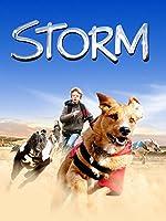 Storm (English Subtitled)
