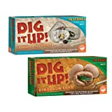 Dig It Up! Dinosaur Eggs and Mineral Stones set of 2