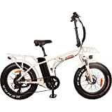 NEW! DJ Folding Bike 750W 48V 13Ah Power Electric