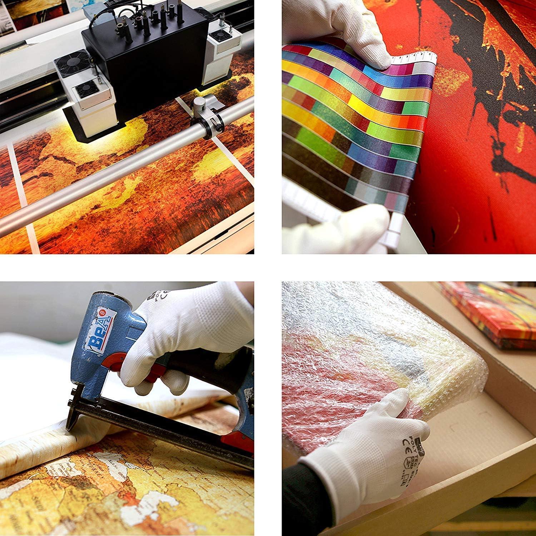 Fleurs de Pavot a-A-0057-b-b,40x120cm Non tiss/ée Motif Coquelicots Rouge Moderne Tableau d/écoration Murale Salon Imprim/é Image Art BOTTLEYK Impression sur Toile