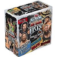 Raj Toy Store WWE SA Live 2018-19 Collection Carry Box