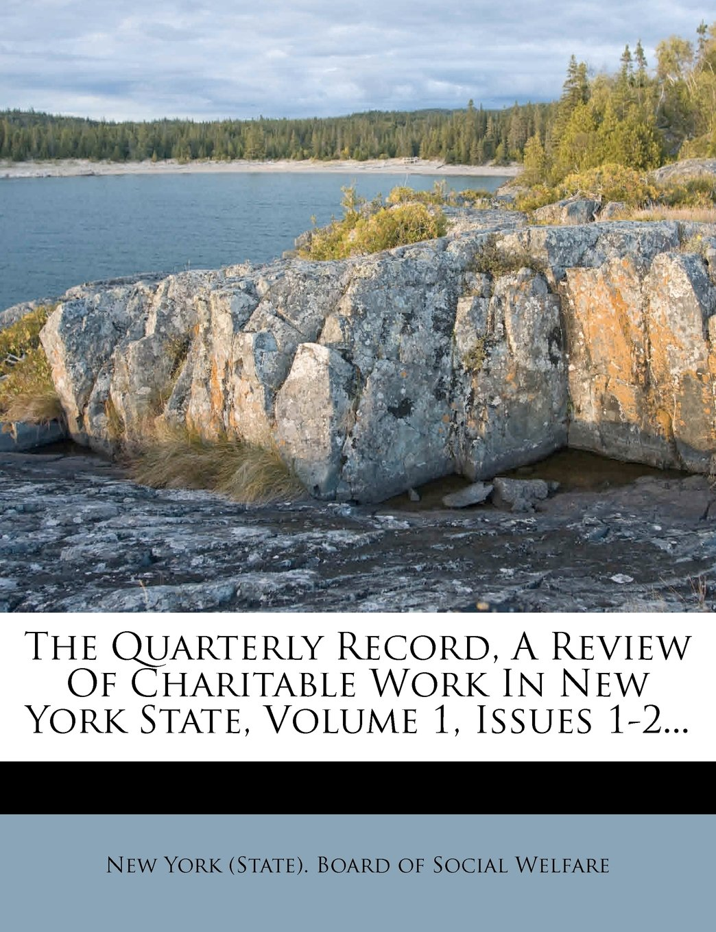 Download The Quarterly Record, A Review Of Charitable Work In New York State, Volume 1, Issues 1-2... PDF