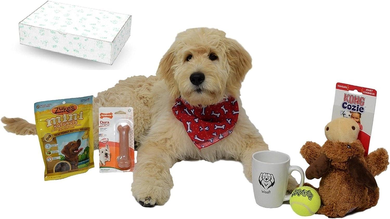 Open Road Goods Caja de regalo de perro y cachorro/perro juguete Set de regalo: Un Doggie Pack de regalo con marcas, 5 Star artículos.: Amazon.es: Productos para mascotas