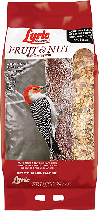 Top 10 Shelled Bird Food