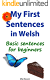 My First Sentences in Welsh: Basic Sentences for Beginners (Learn Welsh Book 5) (English Edition)