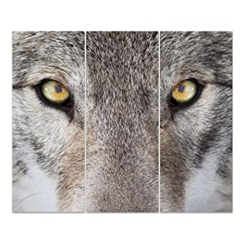 Dekoglas Glasbild Wolf Portrat Echtglas Bild Kuche Wandbild Flur