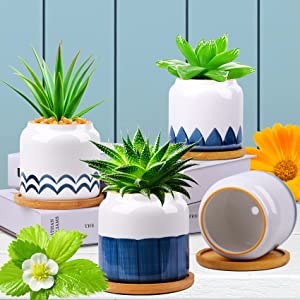 Succulent Plant Pots, 3.5 Inch Small Succulent Planters with Drainage for Plants Live, Hand-Painted Ceramic Planting Pot Flower Pots Bonsai Pots with Bamboo Tray, Unique Gifts for Women/Men, 4 Pack