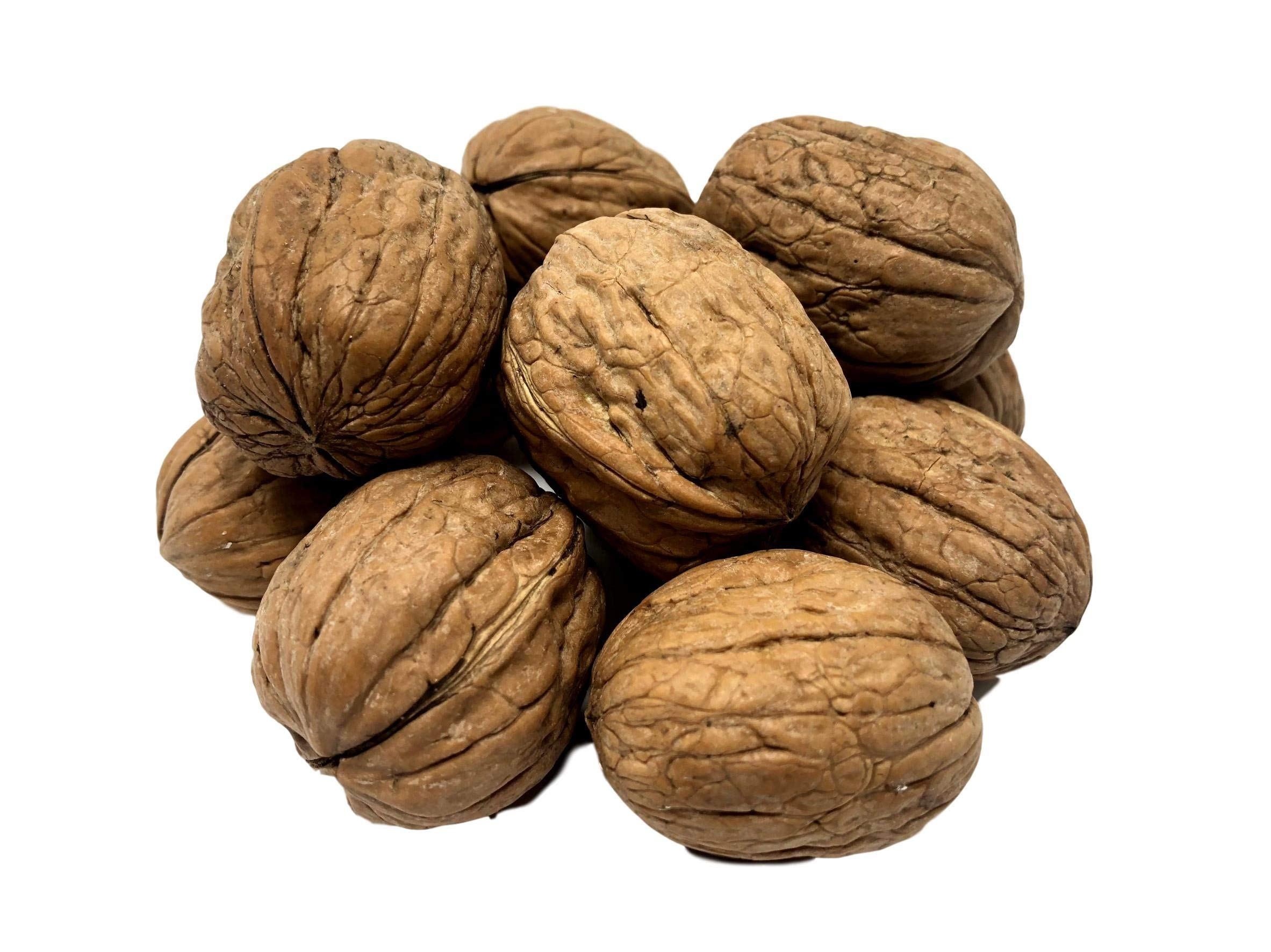 NUTS U.S. - Walnuts In Shell | Grown and Packed in California | Jumbo Size and Chandler Variety | Fresh Buttery Taste and Easy to Crack | Non-GMO and Raw Walnuts in Resealable Bags!!! (2 LBS) by NUTS - U.S. - HEALTH IN EVERY BITE !