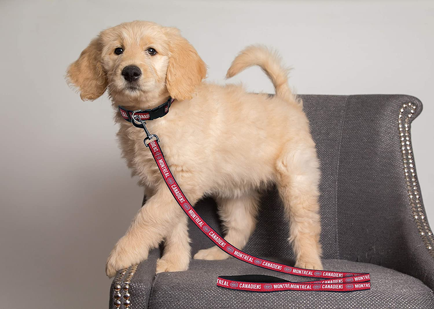 Large Pets First CAN-3031-LG Montreal Canadiens Leash