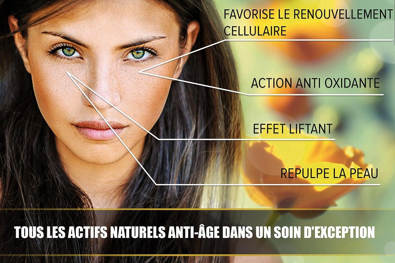 Bordes de los ojos Bio muy concentrado en Gelée Royale - Anti Age eficaz contra los Rides, bolsillos y Cernes - contiene de mantequilla de karité y de aloe ...