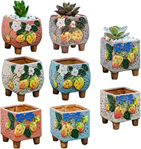 Rarapop 8 Pack Small Ceramic Succulent Planter Pot with Drainage, Square Planting Pot Flower Pots, Mini Plant Pots Cactus Planters for Home and Office Décor
