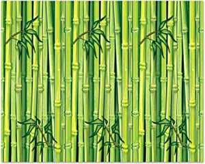 Beistle Bamboo Backdrop, 4 by 30-Feet, Multicolor