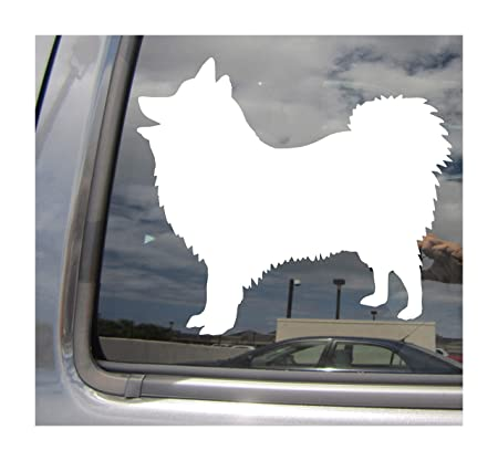 Amazon Com Right Now Decals Japanese Spitz Dog Pure Breed
